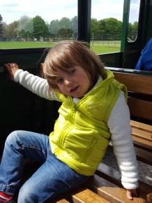 Woburn safari: the train ride