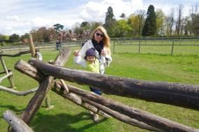 Best days out in Hertfordshire : Hatfield Farm