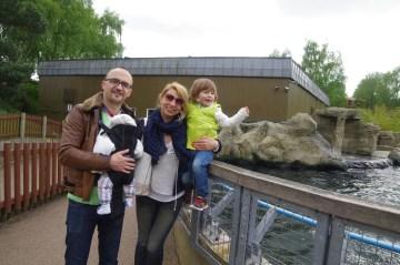 Woburn safari: the sea lions