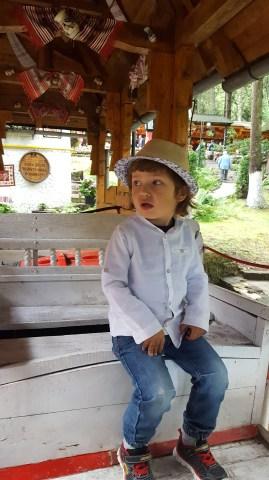 Brasov and around with kids: Sura Dacilor