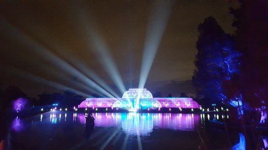 Magic lights at Kew gardens