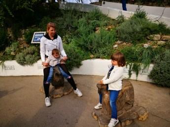Eden project: he Mediterranean biome