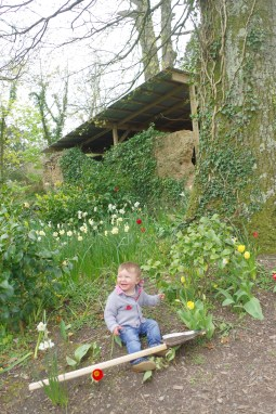 Best places in Cornwall for spring with kids or without: The Lost Gardens of Heligan