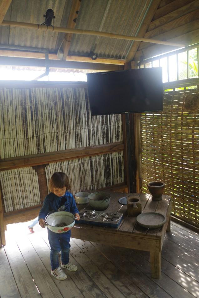 Eden project: the rainforest biome