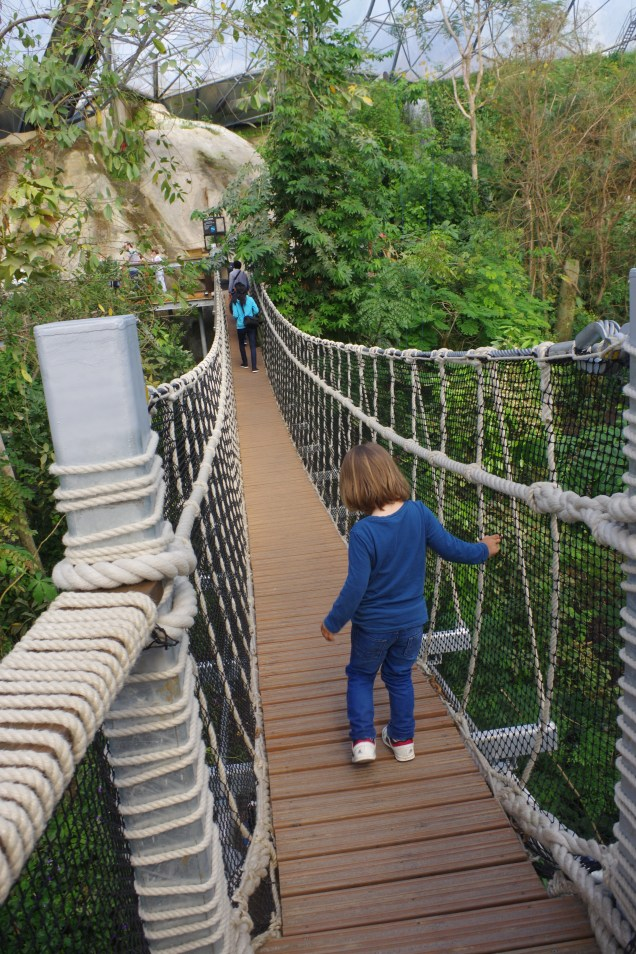 Cornwall with kids: Eden Project