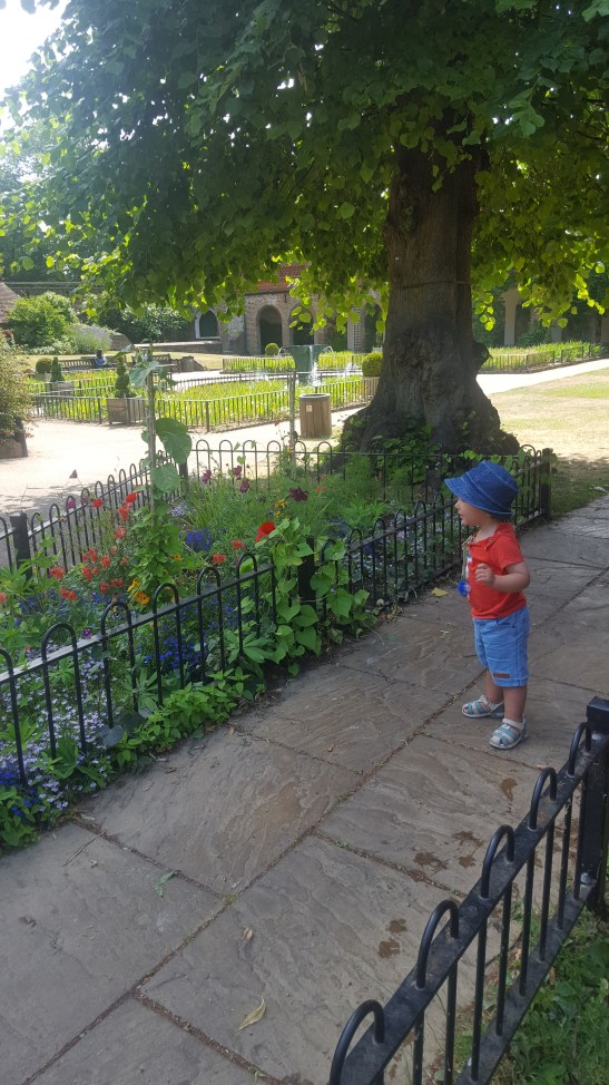 Summer Family daysout London : Holland Park