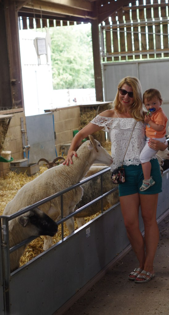 Odds Farm Park - one of the best things to do in Beaconsfield