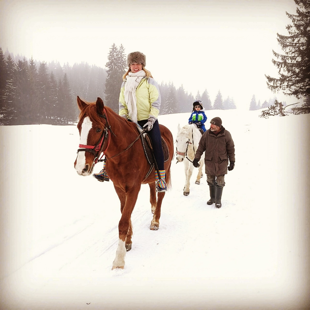 Horseriding in the forest Romania