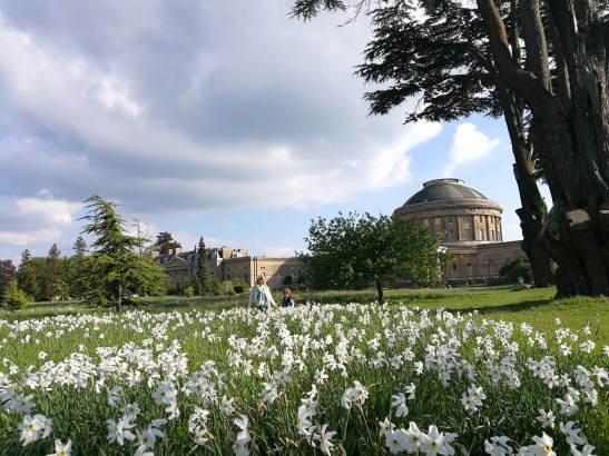 Ickworth with kids