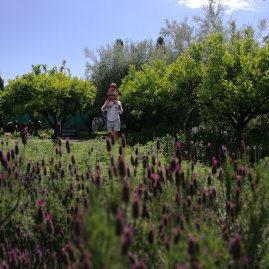 Monaci delle Terre Nere garden