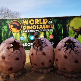 PWP World of Dinosaurs