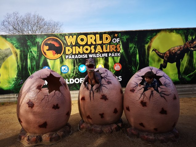 PWP World of Dinosaurs