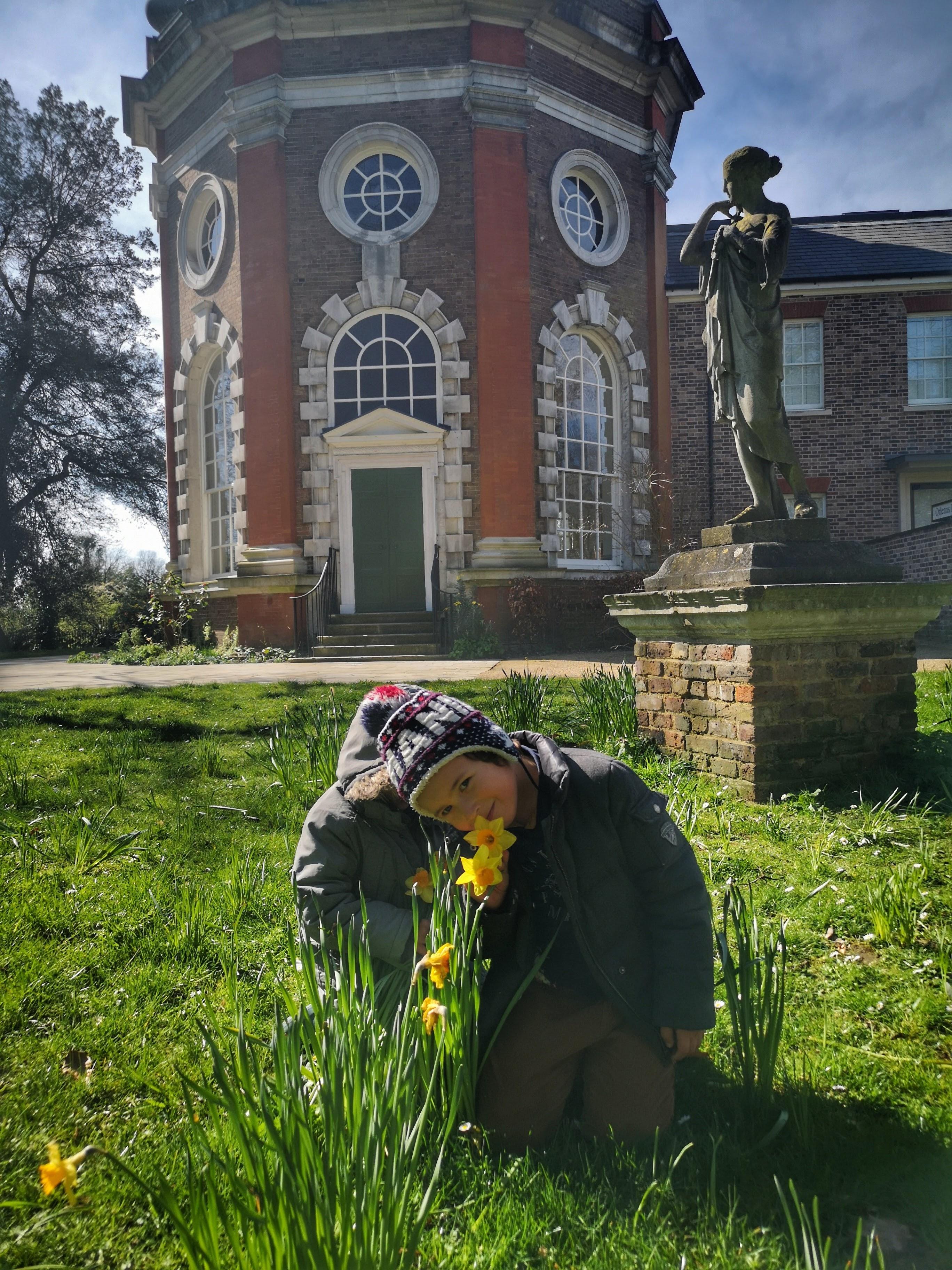 Lockdown versus communism : daffodils by Orleans House