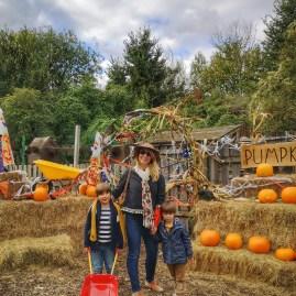 Bocketts Farm Park pumpkin village