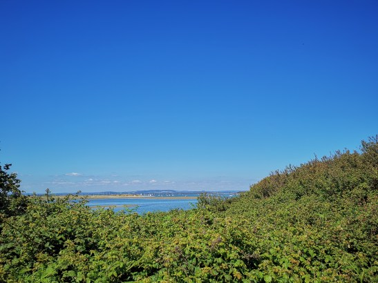 Days out near Chichester with kids : East Head NT trails