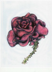 milesius-rose