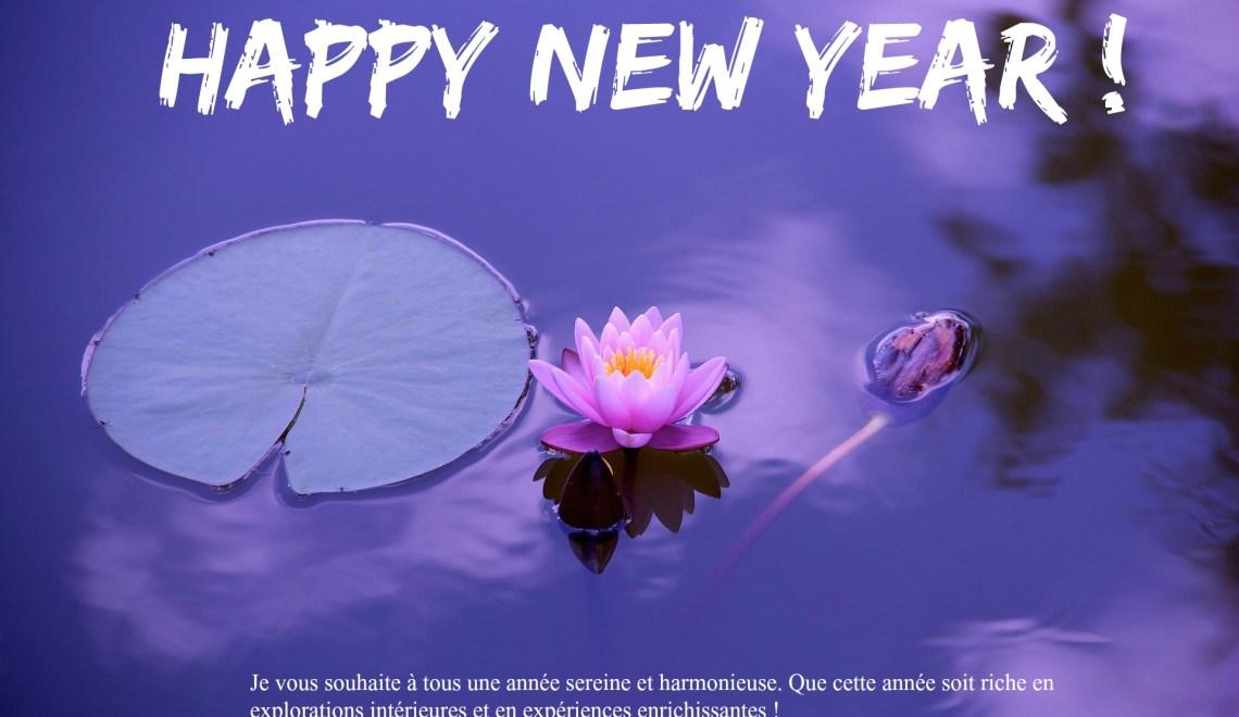 Bilan et programme pour la nouvelle année