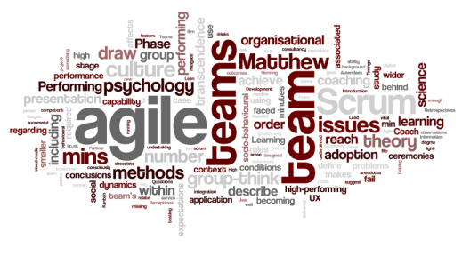 wordle-agile-nashville-2013