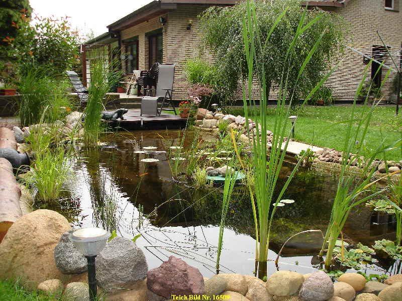 55 Gartenteich Bilder lassen Sie fr Ihren Traumgarten