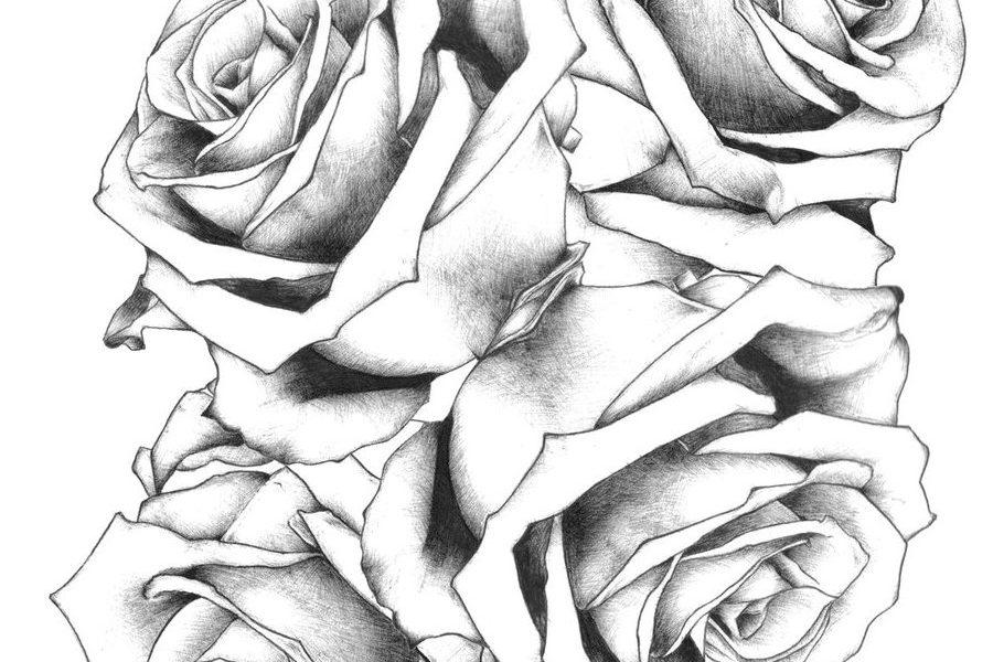 Tattoo Vorlagen Rosen