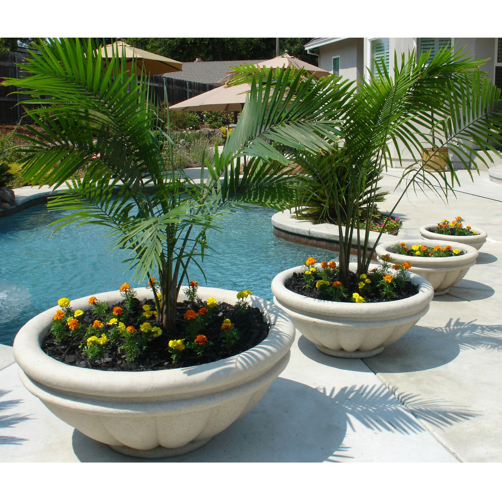 Groe Pflanzkbel 40 kreative Ideen  Balkon Garten
