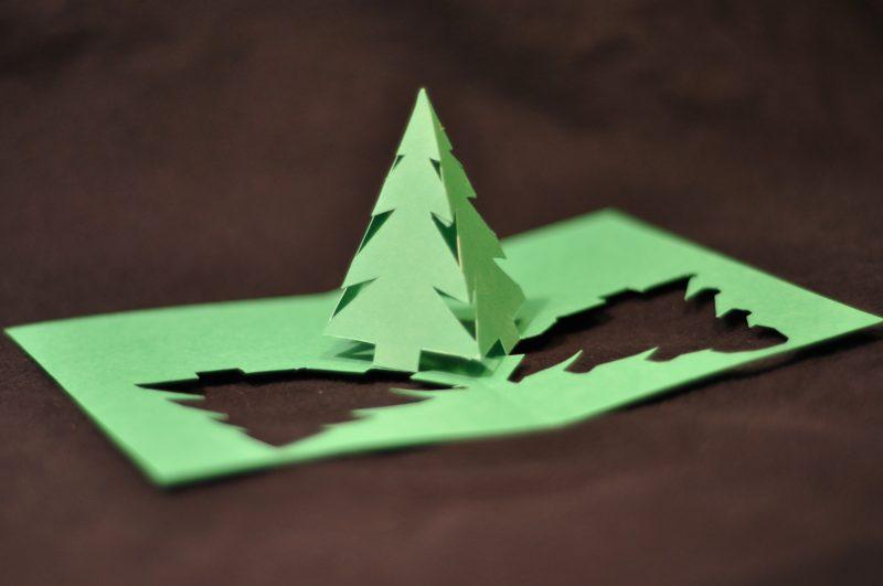 Cewe Weihnachtskarten.Weihnachtskarten Gestalten Mit Kindern