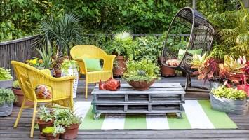 Pflegeleichten Garten anlegen 3 Tipps für Hobbygärtner ...