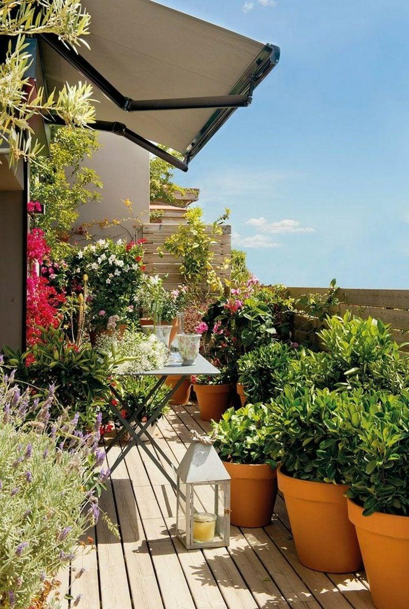 Balkongestaltung Pflanzen Sichtschutz Am Balkon Hier Tolle Ideen