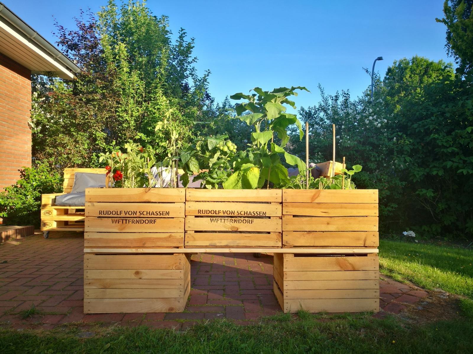 hochbeet mit europaletten bauen hochbeet paletten bauen gemuese hochbeet bau deko bepflanzung. Black Bedroom Furniture Sets. Home Design Ideas