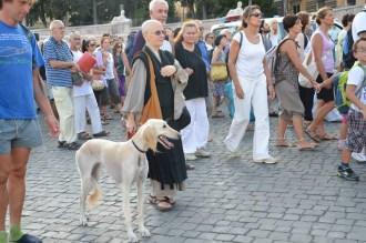 """Anche questo rappresentante del mondo """"animale"""" sembra godersi la pace e la serenità della camminata, senza complessi d'inferiorià"""