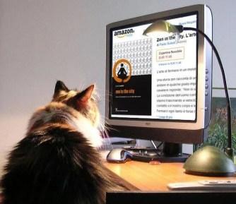 gatto-con-computer-(85474986_595c4f04e6_z)
