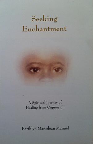 seeking-enchantment-cover-copy1