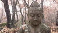 Buda estatua Shorin-ji