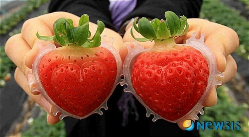 Banchan: Heart-shaped Strawberry Box Edition
