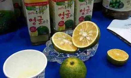 Limes? Grown in Korea?