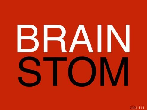 brainstom732.001