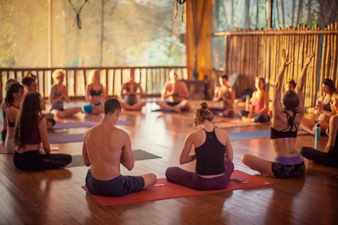 zen yoga studio danyasa