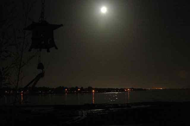 alameda moon