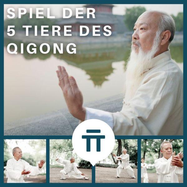 Zenspotting 5 Tiere des Qigong