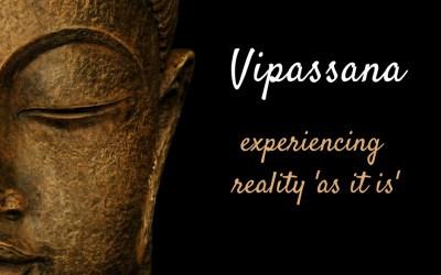 Vipassana meditatie 2014!! de eerste stappen op het Dhamma pad