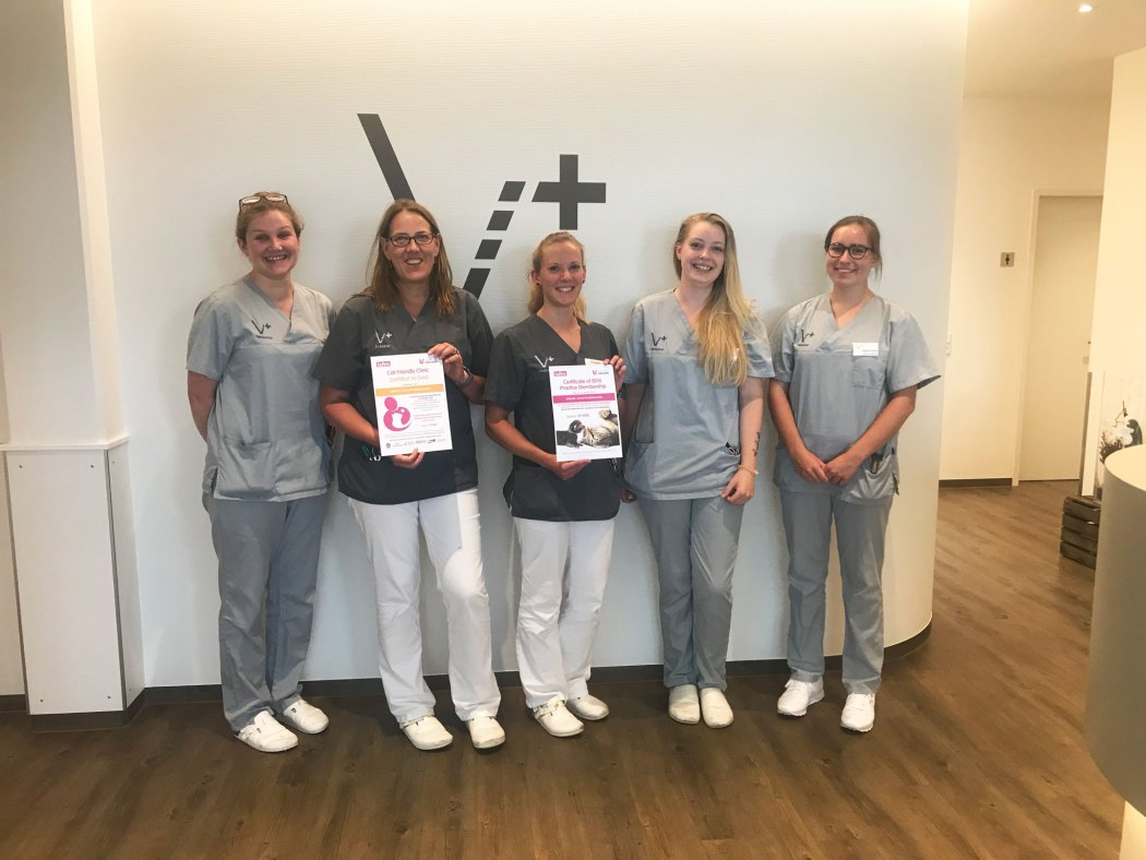 Gruppenbild Team VetSpezial Cat Friendly Clinic