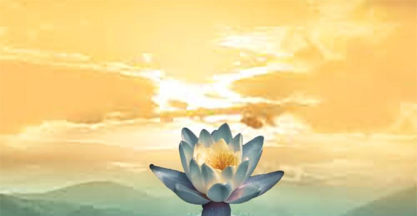 心生菩提樹,平凡之中體悟真理,智緣,找到適合自己的人生軌跡,心生的意念不要過重,凡事要盡力而為,也要量力而行,人生軌跡
