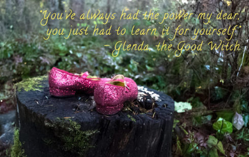 Glinda the Good Witch: Counselor, Consultant or Coach?