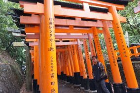 My friend with the torii gates in Fushimi Inari-Taishi