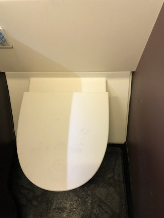 Toilet is clean in the lavatory