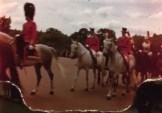 Guards - Horses - UK