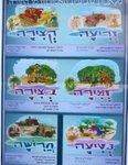 Shmitta Posters