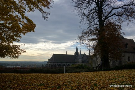 Mons, vue sur Sainte-Waudru