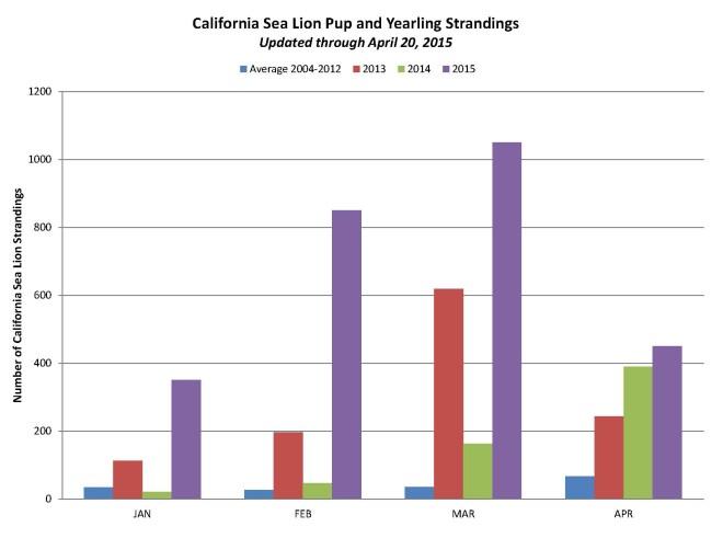 csl_strandings_graph