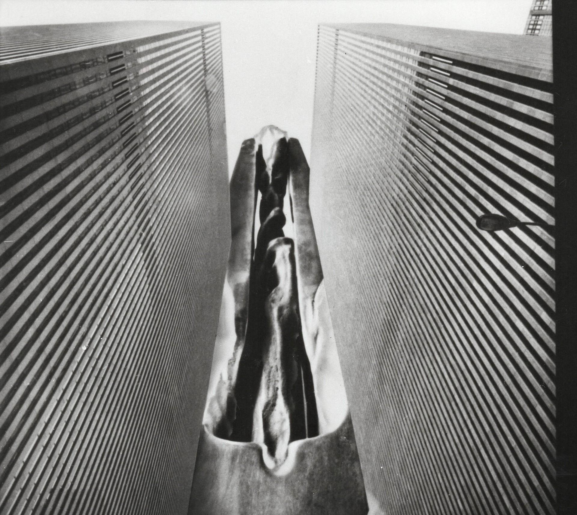 Francesco Somaini  Uno scultore per la citt New York